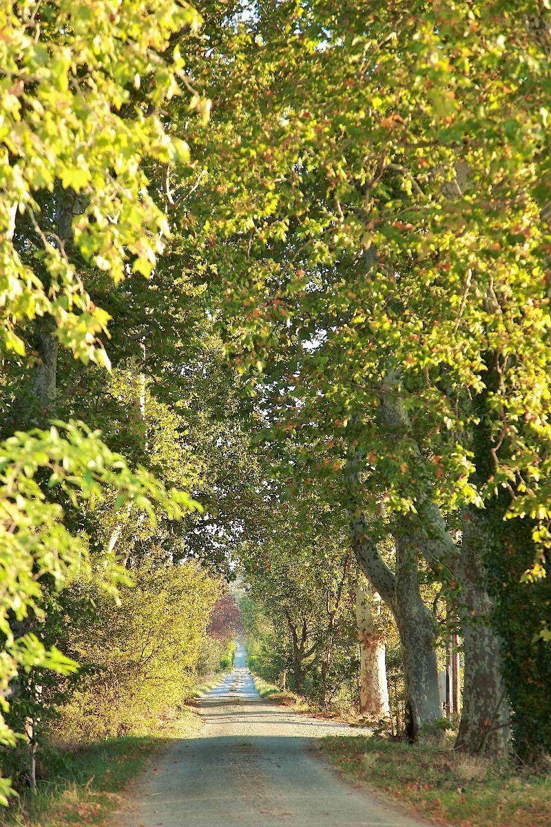 Manoir en bordure du canal du Midi