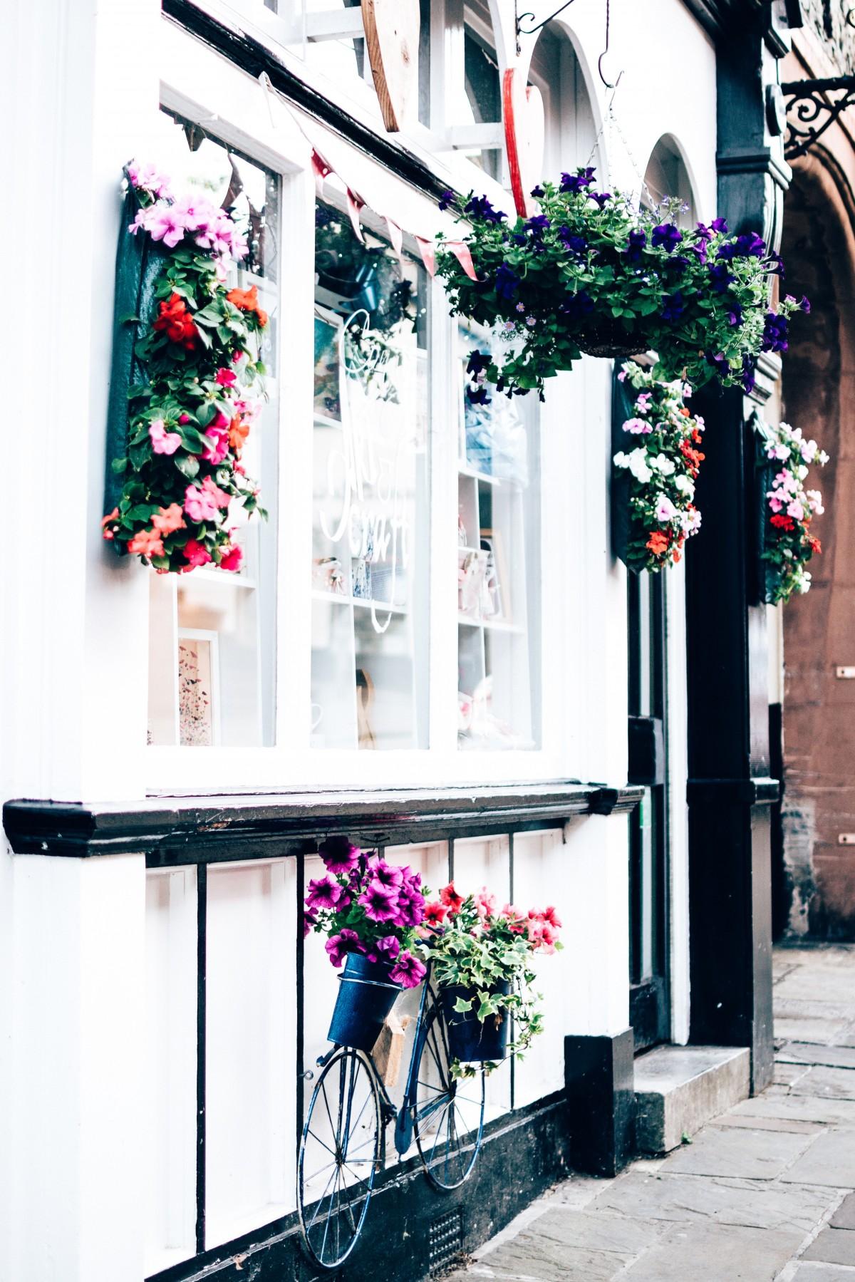 balcony_building_daylight_decoration_exterior_flowers_glass_windows_house-1517311
